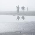 Tofino Surfers.jpg